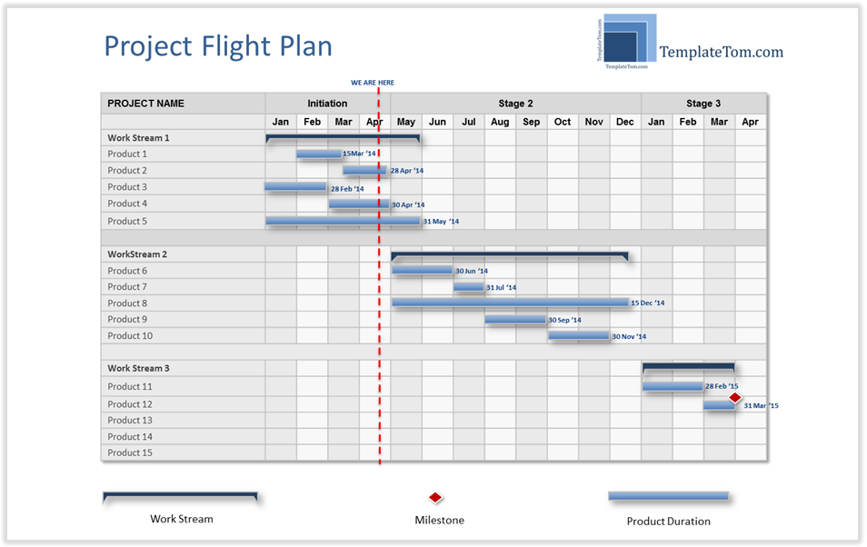 management plan template